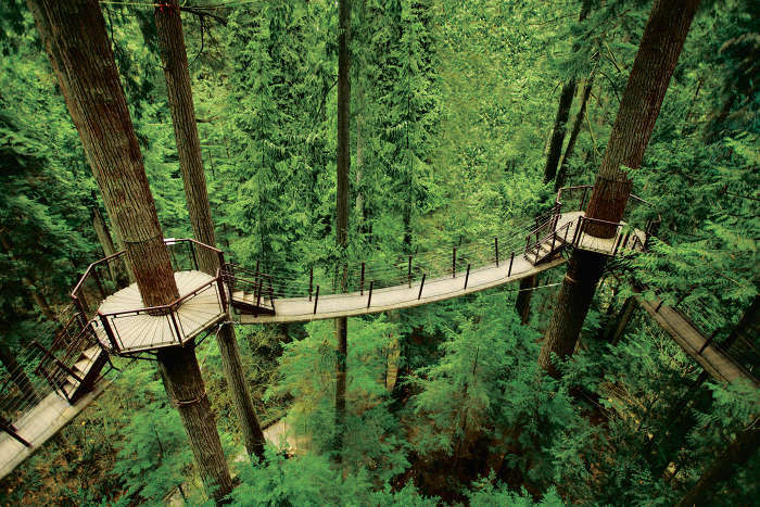 Capilano-Suspension-Bridge-Park